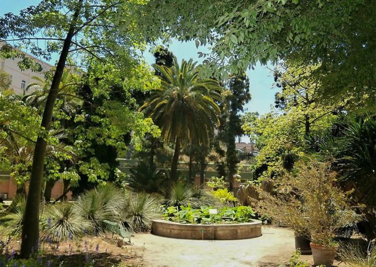 jardi2